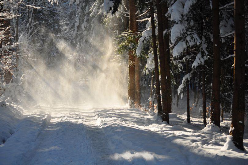 Winter in Wintethur II